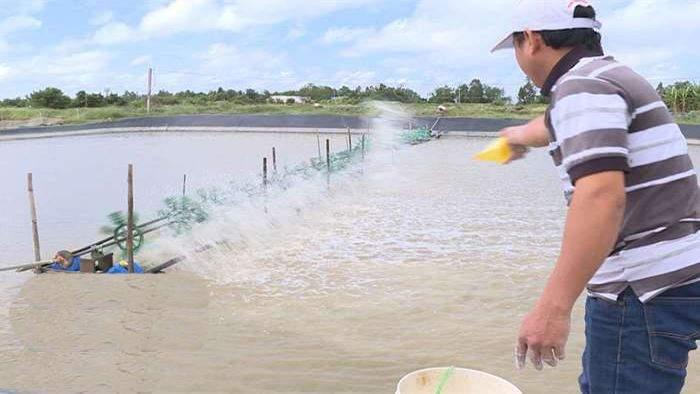 Rải vôi, xử lý nước sau mỗi trận mưa - Ảnh Internet